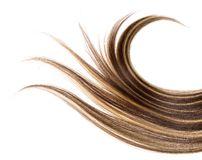 long-hair-8208145